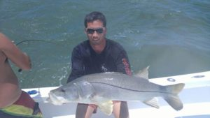 Snook Fishing St. Pete Beach Charters